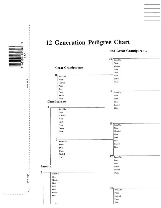 pedigree chart 5 generation pink stevenson genealogy copy