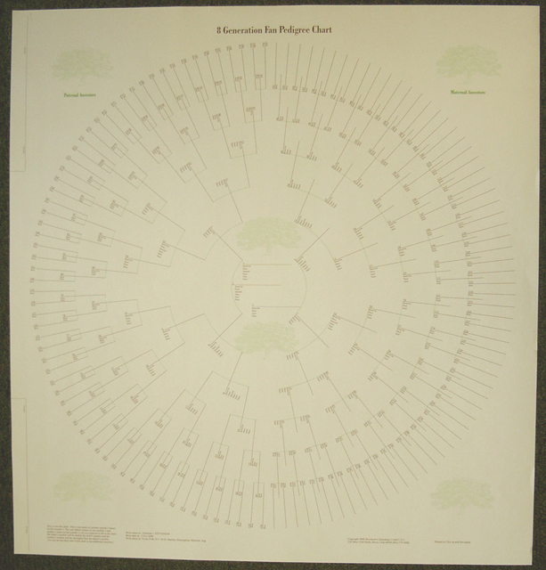 8 generation pedigree chart stevenson genealogy copy center l l c