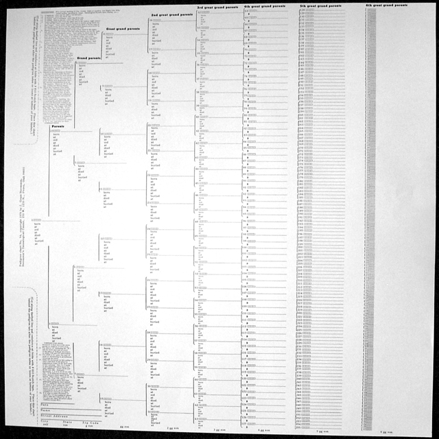 family tree chart  large parchment  u2013 stevenson genealogy  u0026 copy center l l c