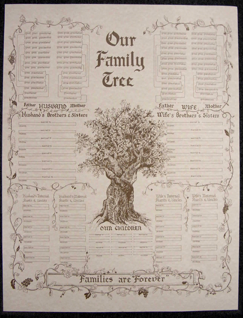 Sample Chart Templates 3 generation pedigree chart template : ... Charts u0026 Forms / Oversize Charts / Family Tree Chart, Large Parchment